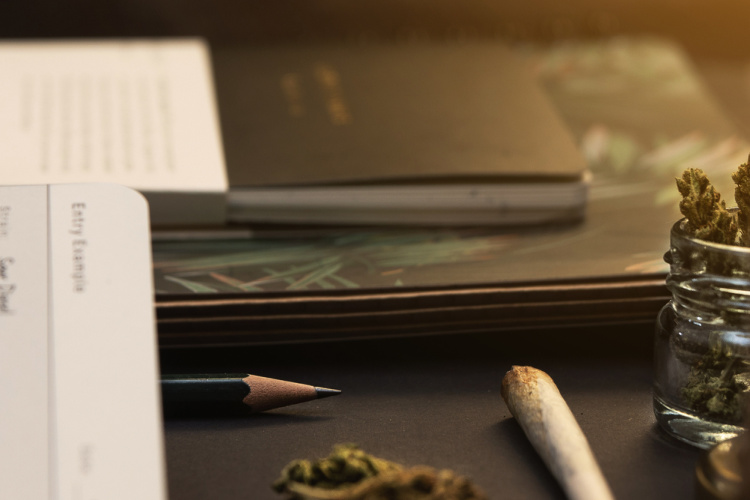 cannabis journal 2